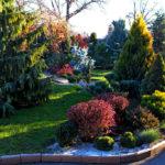 Химические средства защиты сада
